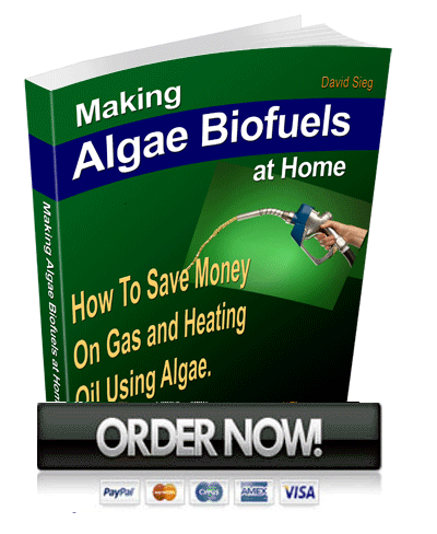 making algae biofuels