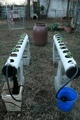 hydroponics outdoor system