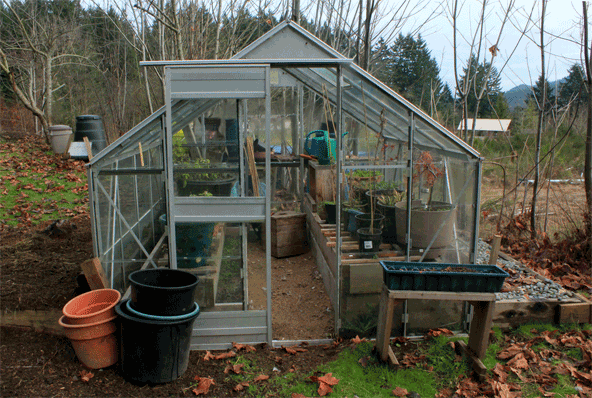 green house glass
