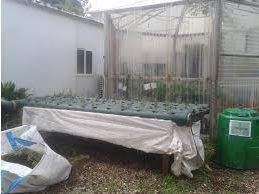 backyard hydro system