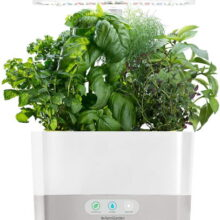 hydroponic table top units